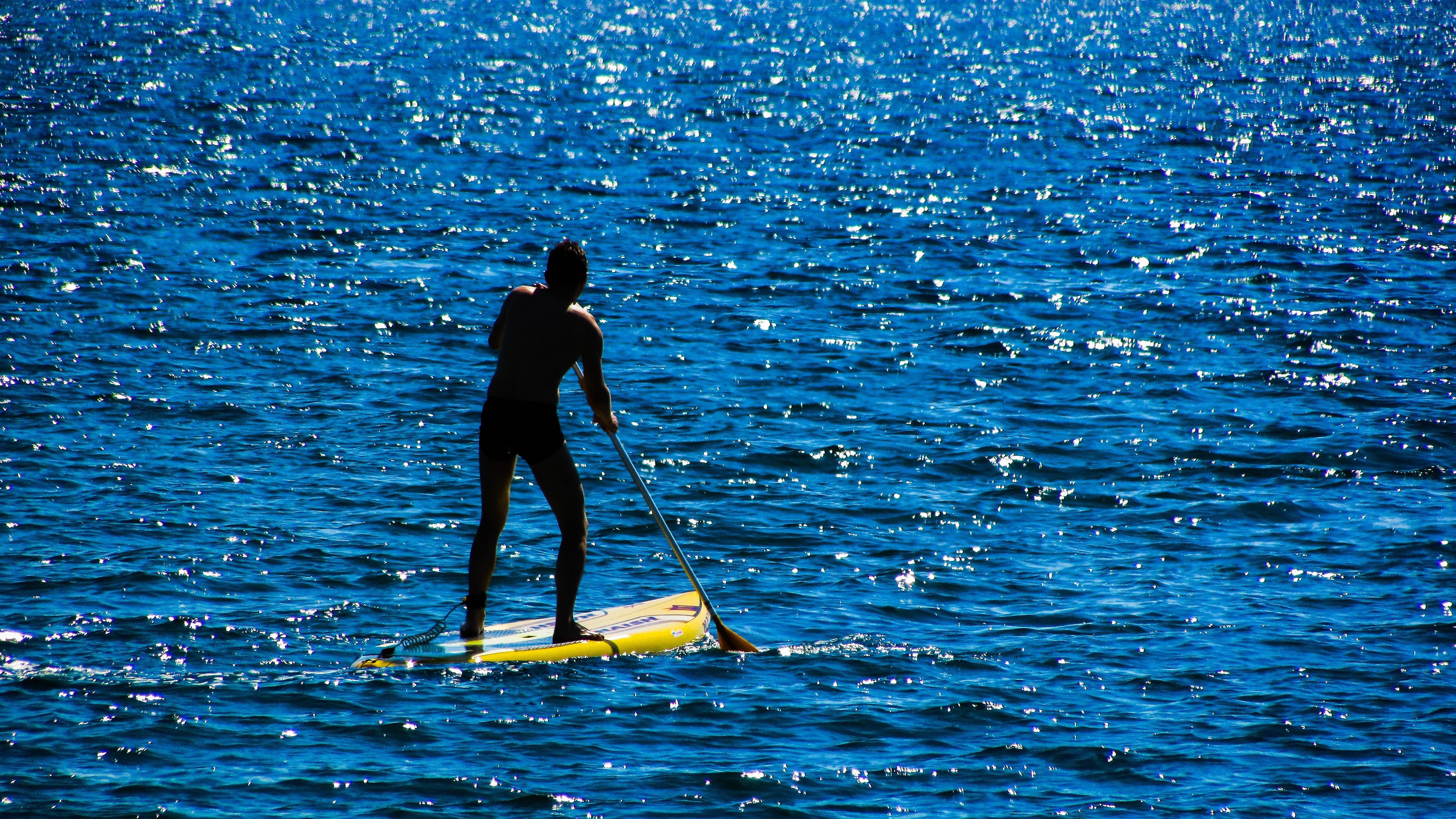 action-beach-board-236953